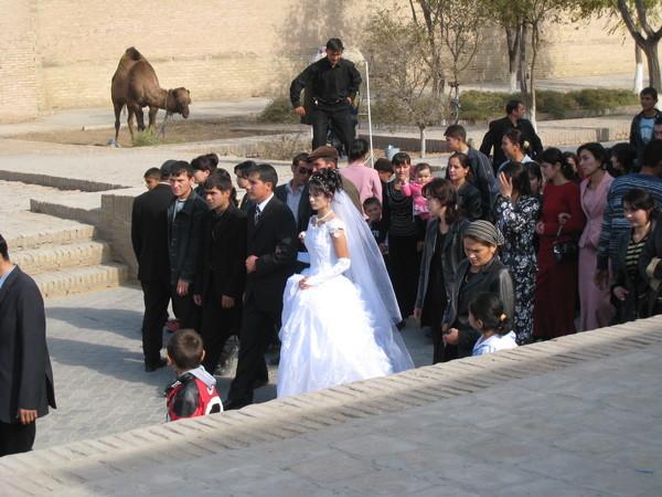 Uzbekistan Khiva Wedding Parade 3