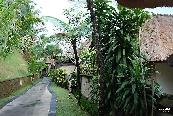 Bali Ubud Puri Wulandari Quiet route to villa