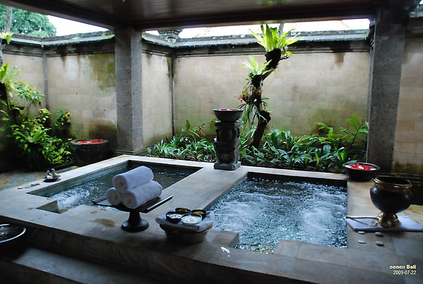 Bali Ubud Puri Wulandari spa pool