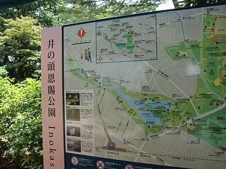 0708091-三鷹之森美術館旁邊就是井之頭公園
