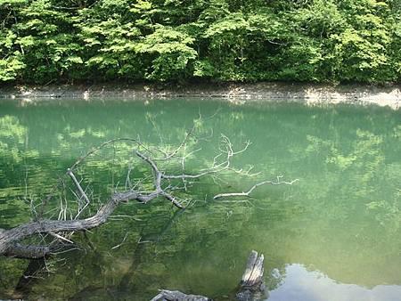 0713157-雞頭場之池.JPG