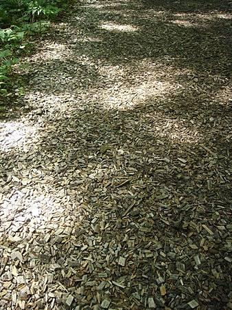 0713221-地上鋪的是小木塊.JPG