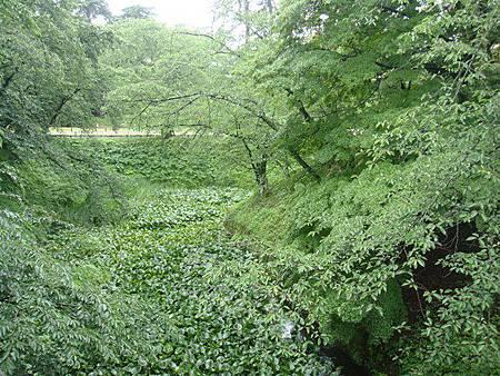 0714071-下乘橋下的護城河.JPG