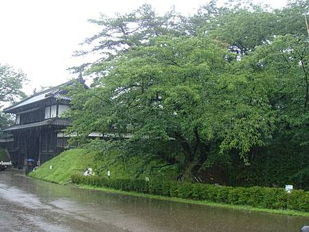 0714028-下大雨的弘前公園.JPG