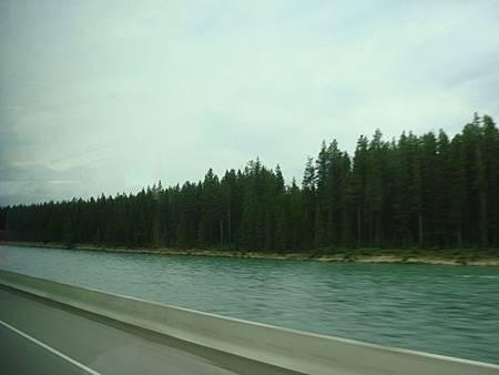 0711105-93號公路Icefields Parkway冰原大道.JPG