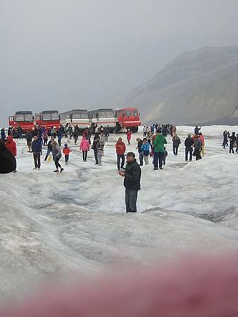 0711238-Columbia Icefield哥倫比亞冰原.JPG