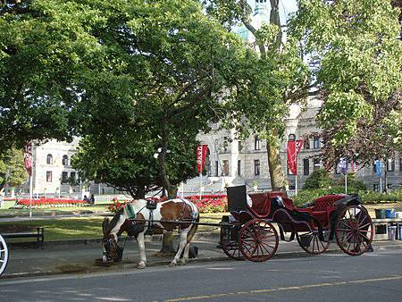0715453-Victoria的市區觀光馬車.JPG