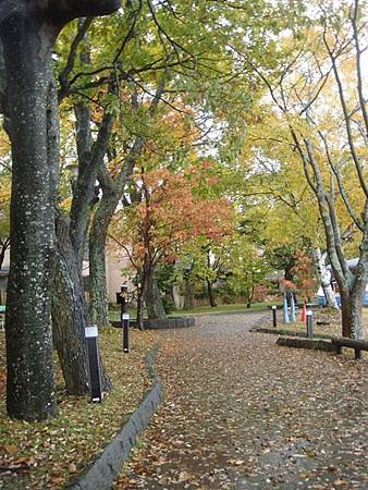 1022293-十和田湖畔.JPG