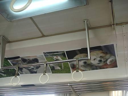 1024064-秋田內陸線車廂內.JPG
