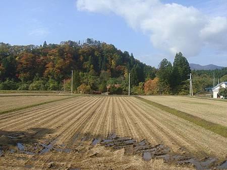 1024097-秋田內陸線景色.JPG