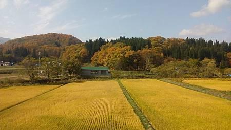 1024163-秋田內陸線景色.jpg