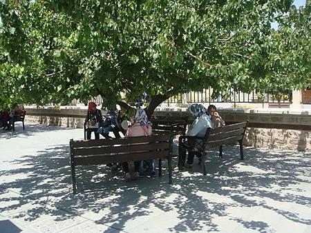 0708170-Mevlâna Museum梅夫拉那清真寺.JPG