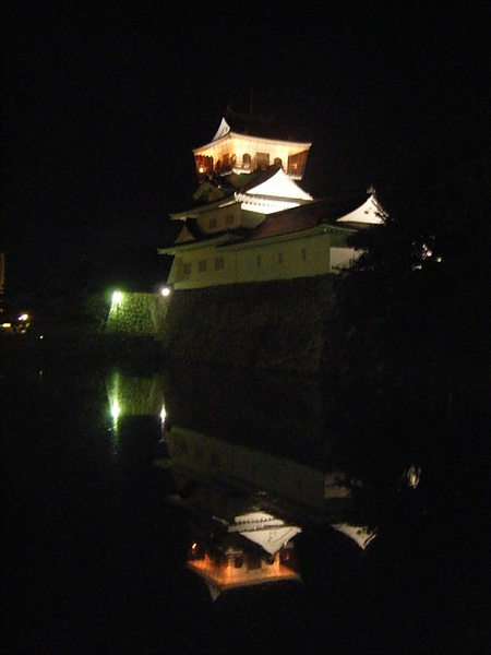 0807367-夜裡的富山城.JPG