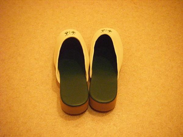 0806117-高跟的廁所拖鞋.JPG