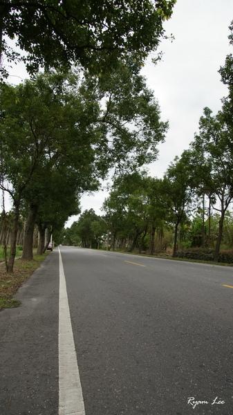 花東縱谷公路