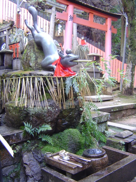 裡面有各式各樣動作的狐狸銅像