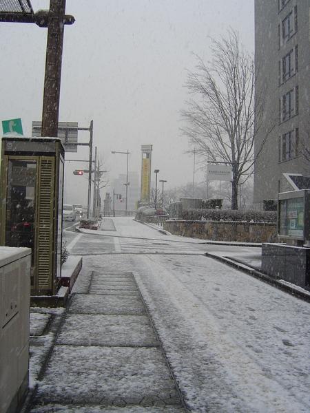 開始積薄薄雪