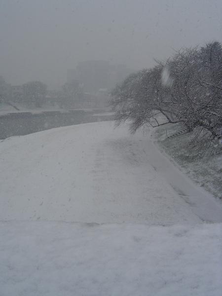 河的兩旁都積雪了