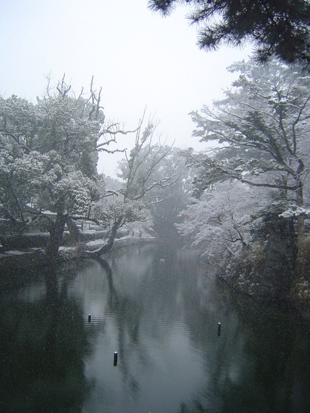 公園內的小河~好寧靜