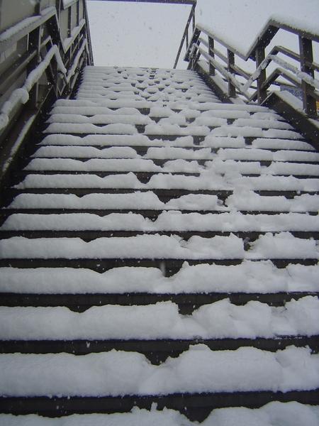 危險天橋!積雪15公分