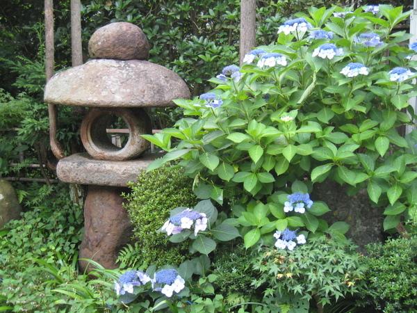 鞍馬站的小小庭園