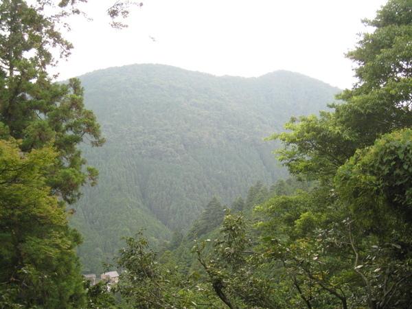 山腰上看到的景色之ㄧ