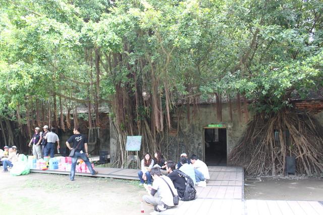 台南景點-安平樹屋