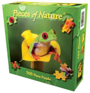 Frog_PuzzleD