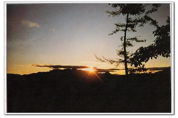 阿里山002.jpg