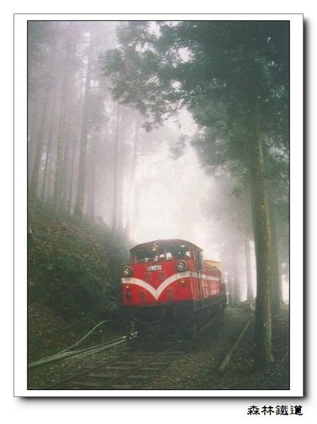 森林鐵道.jpg