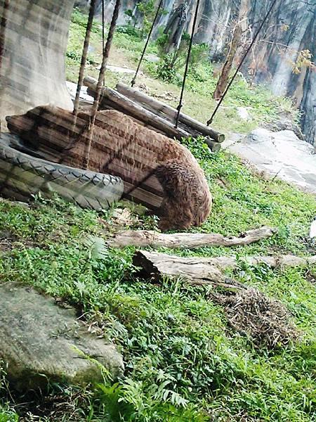 1020206-動物園