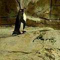20140123-動物園