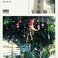 20141220-HerbGarden