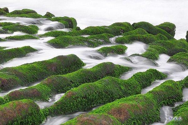 台北縣石門鄉富基漁港旁邊的老梅綠石槽