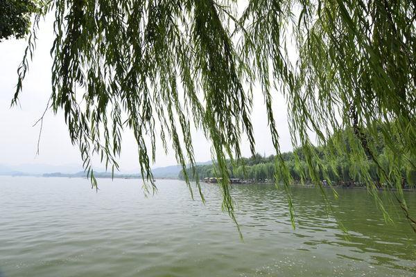 西湖 老男人拍攝