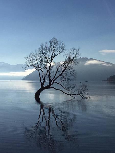 在 Lake Wanaka 。紐西蘭-1