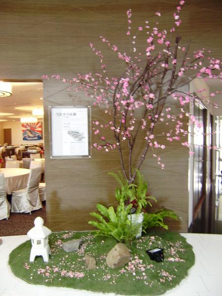 美麗的日本櫻花