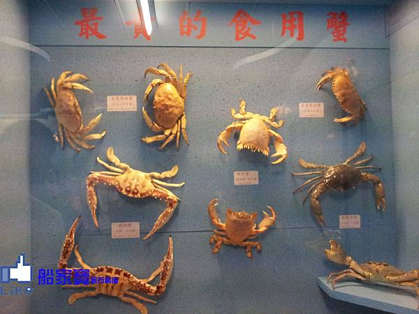 螃蟹館1.jpg