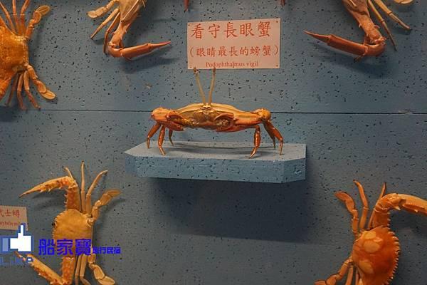 螃蟹館17.jpg