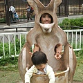 多摩動物園 099.jpg