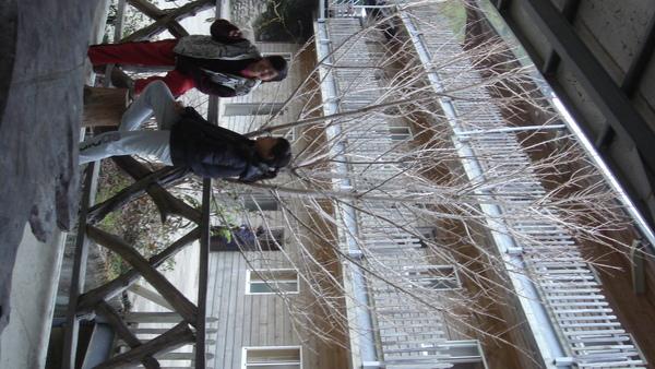 照片2009年1月22日 111.jpg