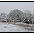 名古屋城(Nagoya Castle)02