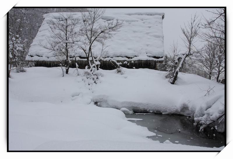 白川鄉(Shirakawa-go)38