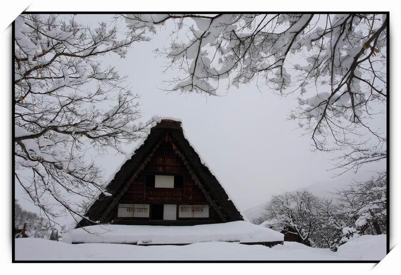 白川鄉(Shirakawa-go)44