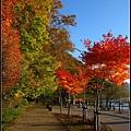 支笏湖(Lake Shikotsu)09