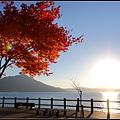 支笏湖(Lake Shikotsu)11