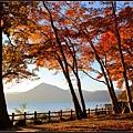 支笏湖(Lake Shikotsu)14