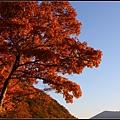 支笏湖(Lake Shikotsu)15