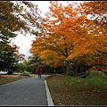 大沼国定公園(Ōnuma Quasi-National Park)04