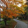 大沼国定公園(Ōnuma Quasi-National Park)05